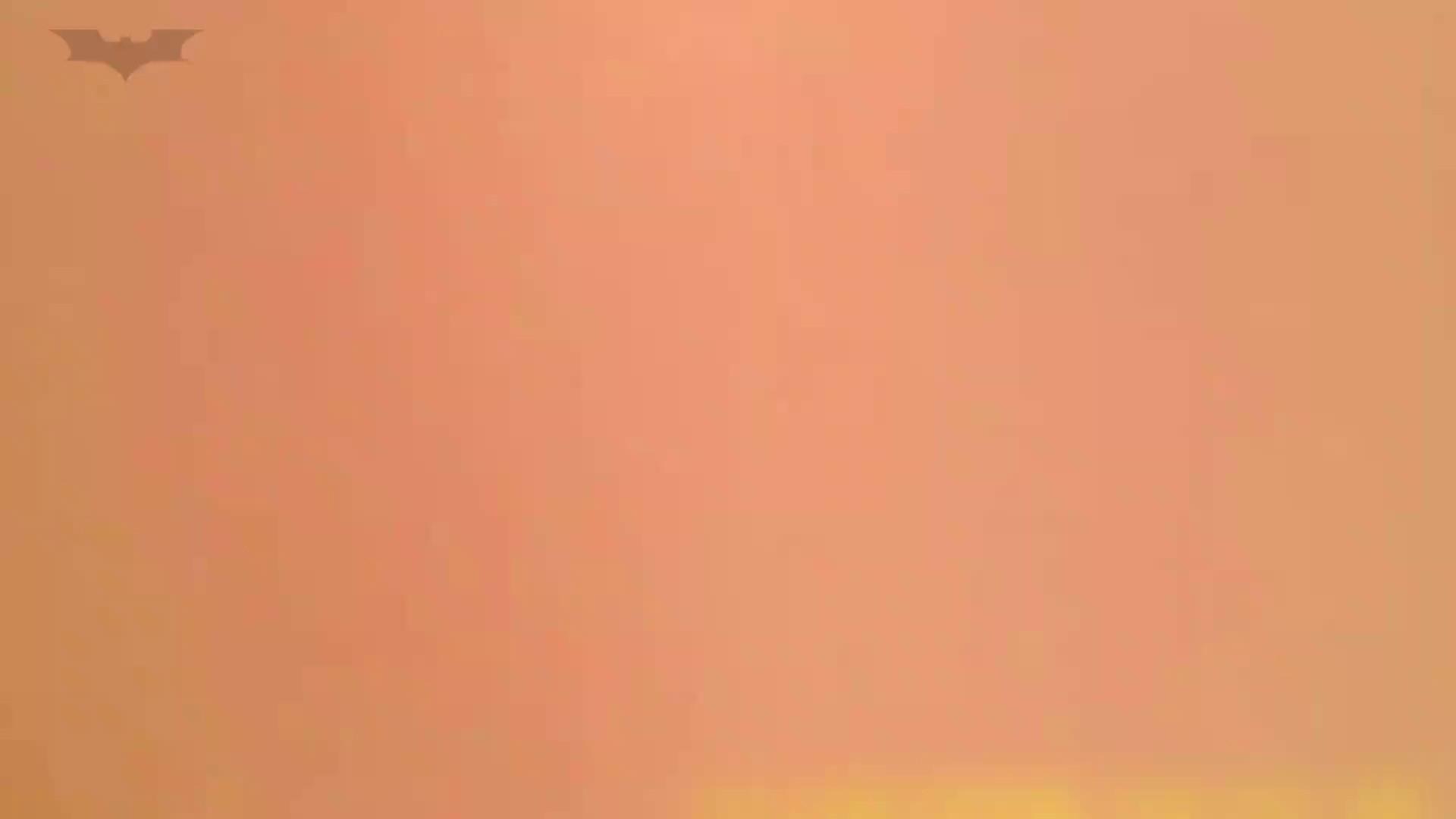 夏の思い出浜辺トイレ盗撮Vol.16 盛合せ 濡れ場動画紹介 70画像 4