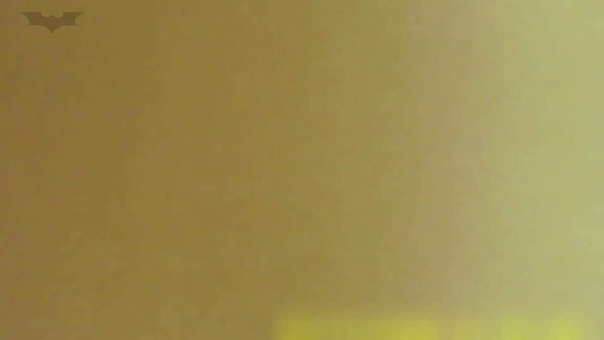 夏の思い出浜辺トイレ盗撮Vol.19 トイレのぞき AV動画キャプチャ 103画像 20