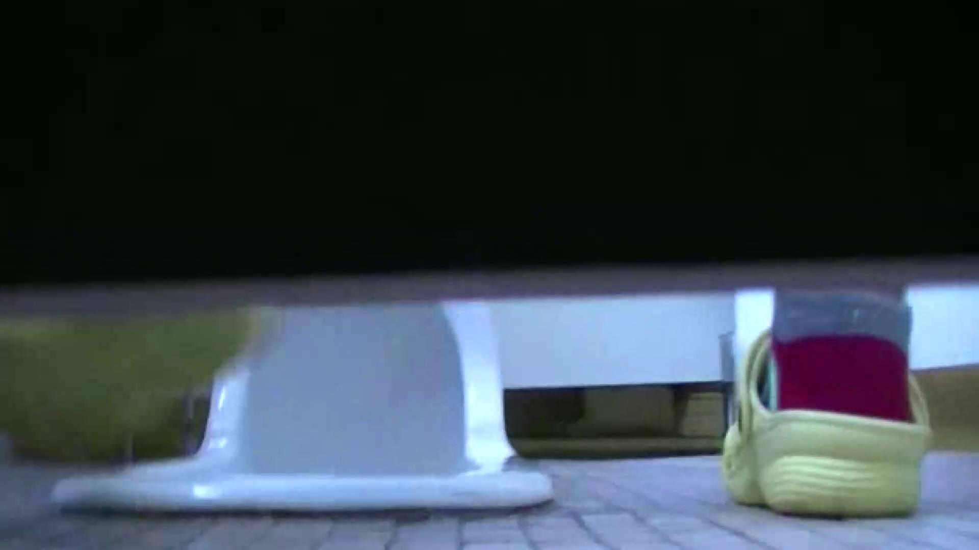 夏の思い出浜辺トイレ盗撮Vol.23 トイレのぞき ぱこり動画紹介 59画像 42