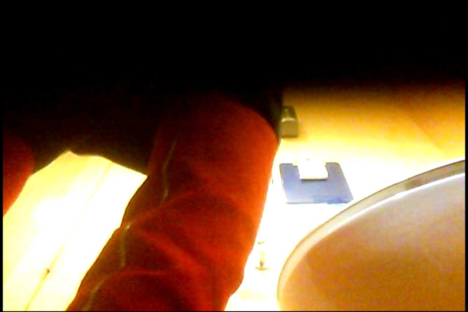 マダムが集まるデパートお手洗い Vol.04 お手洗いのぞき 濡れ場動画紹介 85画像 29