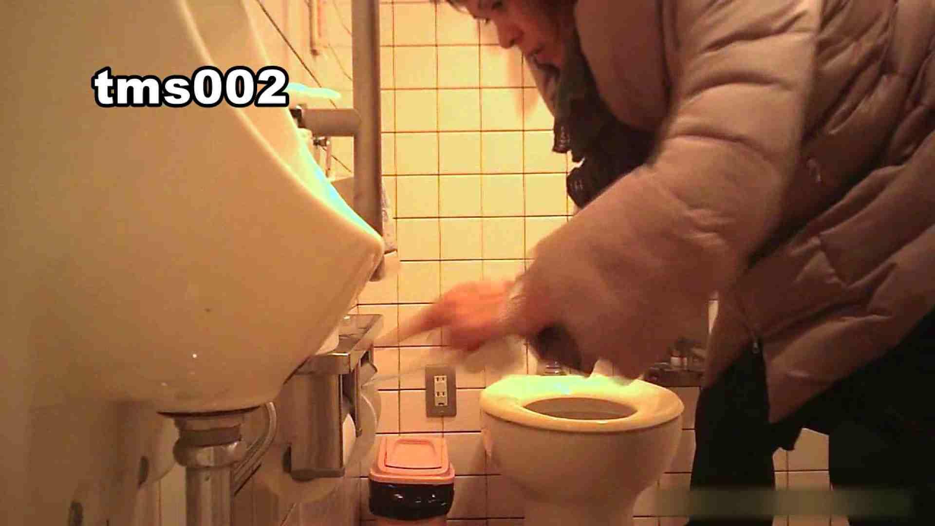 トイメンの割れ目 vol.002 洗面所 セックス画像 52画像 4