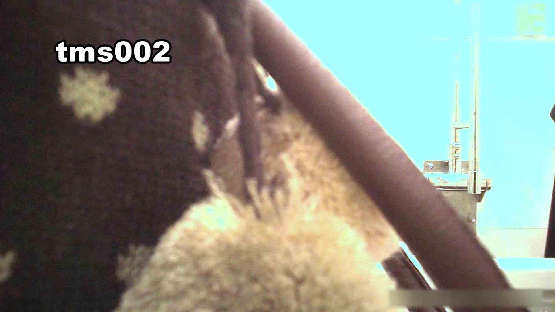 トイメンの割れ目 vol.002 ギャル攻め AV動画キャプチャ 52画像 12
