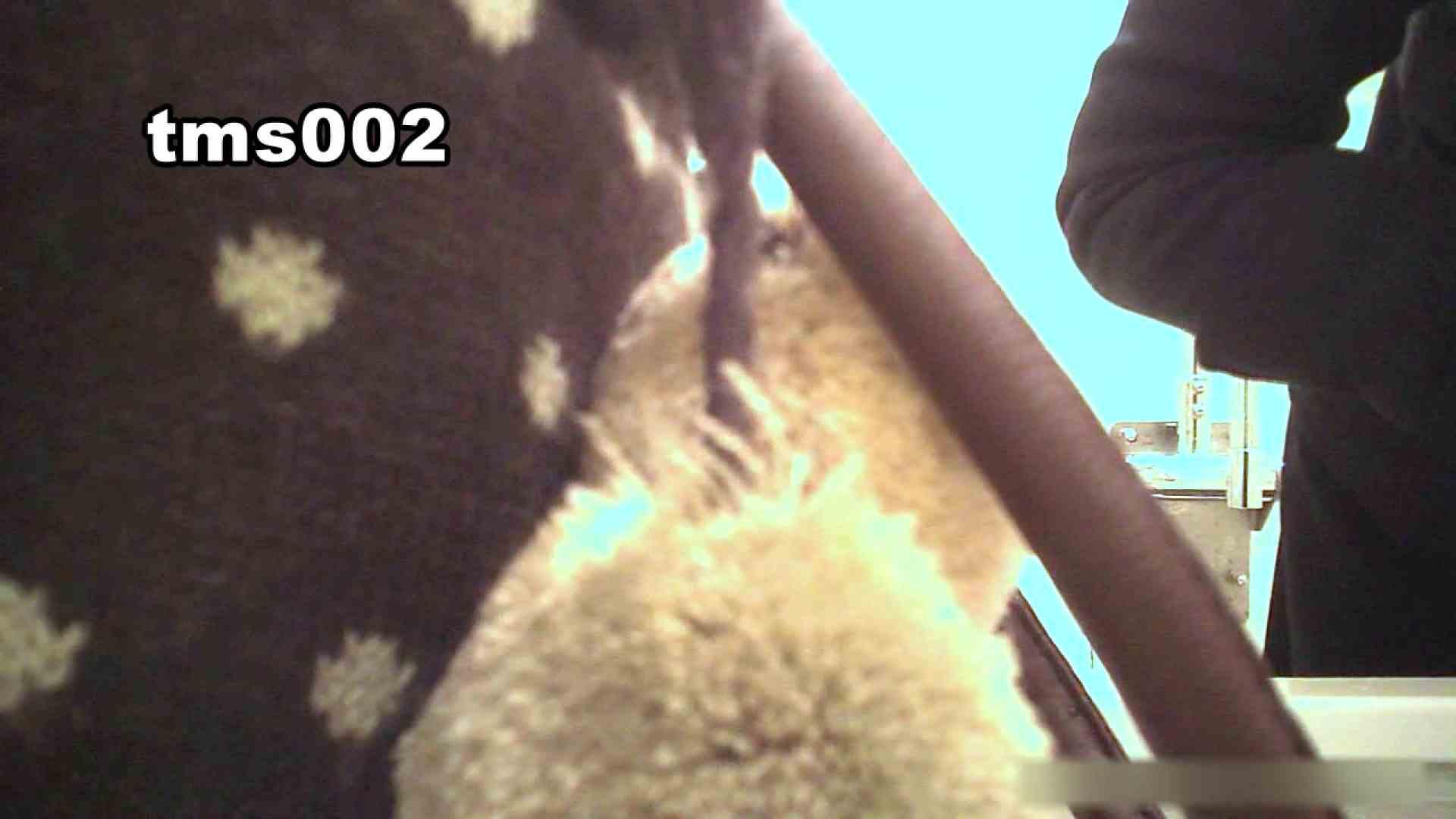 トイメンの割れ目 vol.002 洗面所 セックス画像 52画像 14