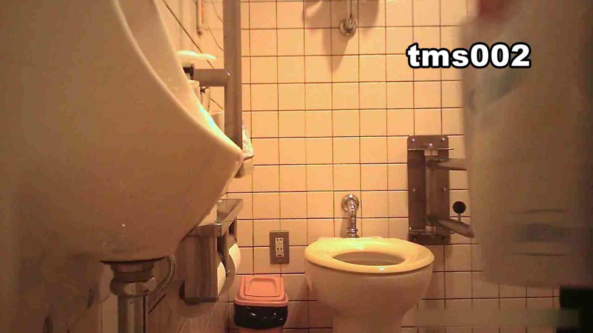トイメンの割れ目 vol.002 洗面所 セックス画像 52画像 39