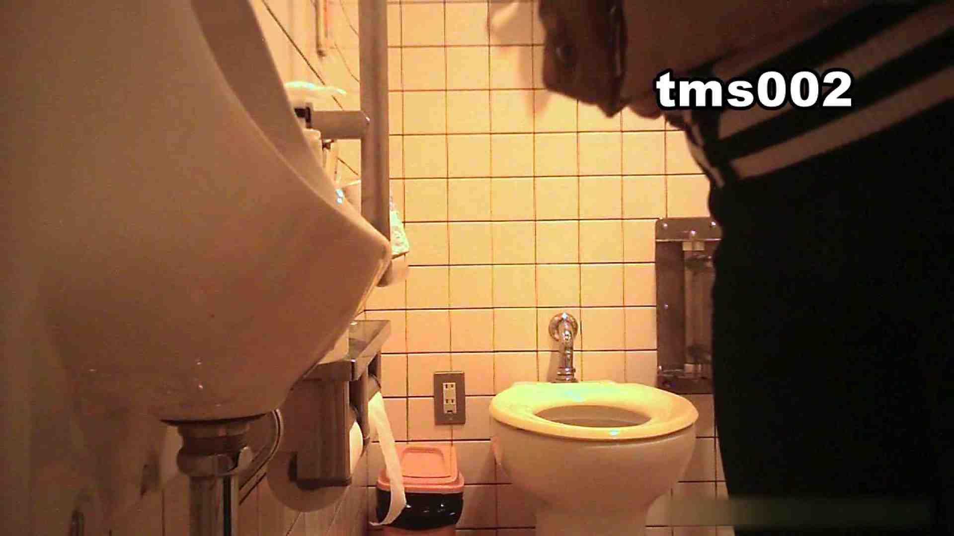 トイメンの割れ目 vol.002 洗面所 セックス画像 52画像 44