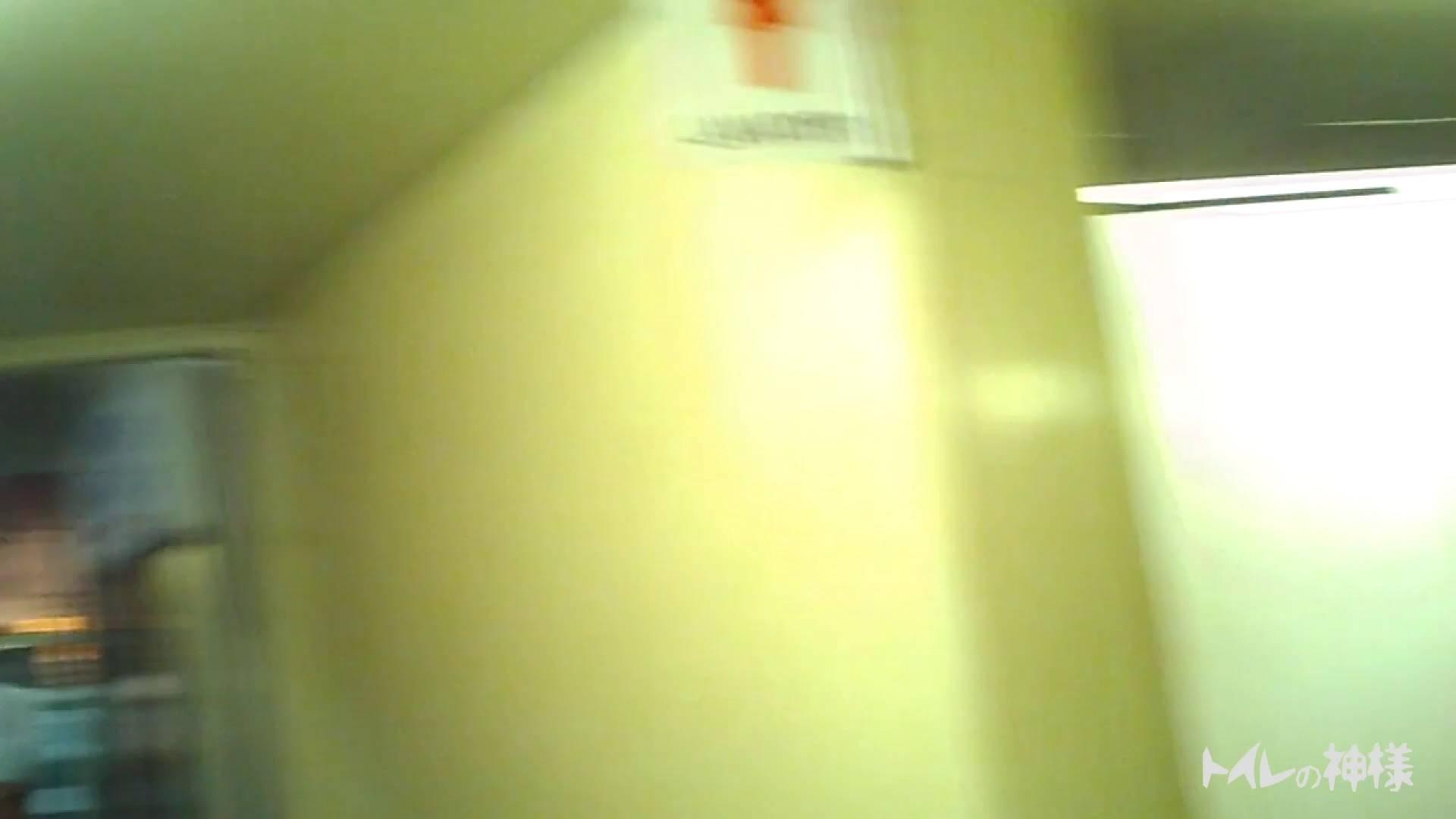 ▲2017_28位▲ ビアガーデン!美人が6人!トイレの神様 Vol.11 細身女性 性交動画流出 72画像 17