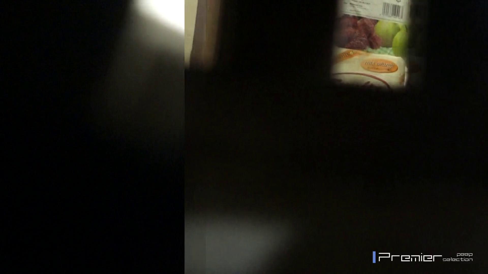 マニア必見!ポチャ達のカーニバル美女達の私生活に潜入! 桃色乳首 AV無料動画キャプチャ 88画像 41