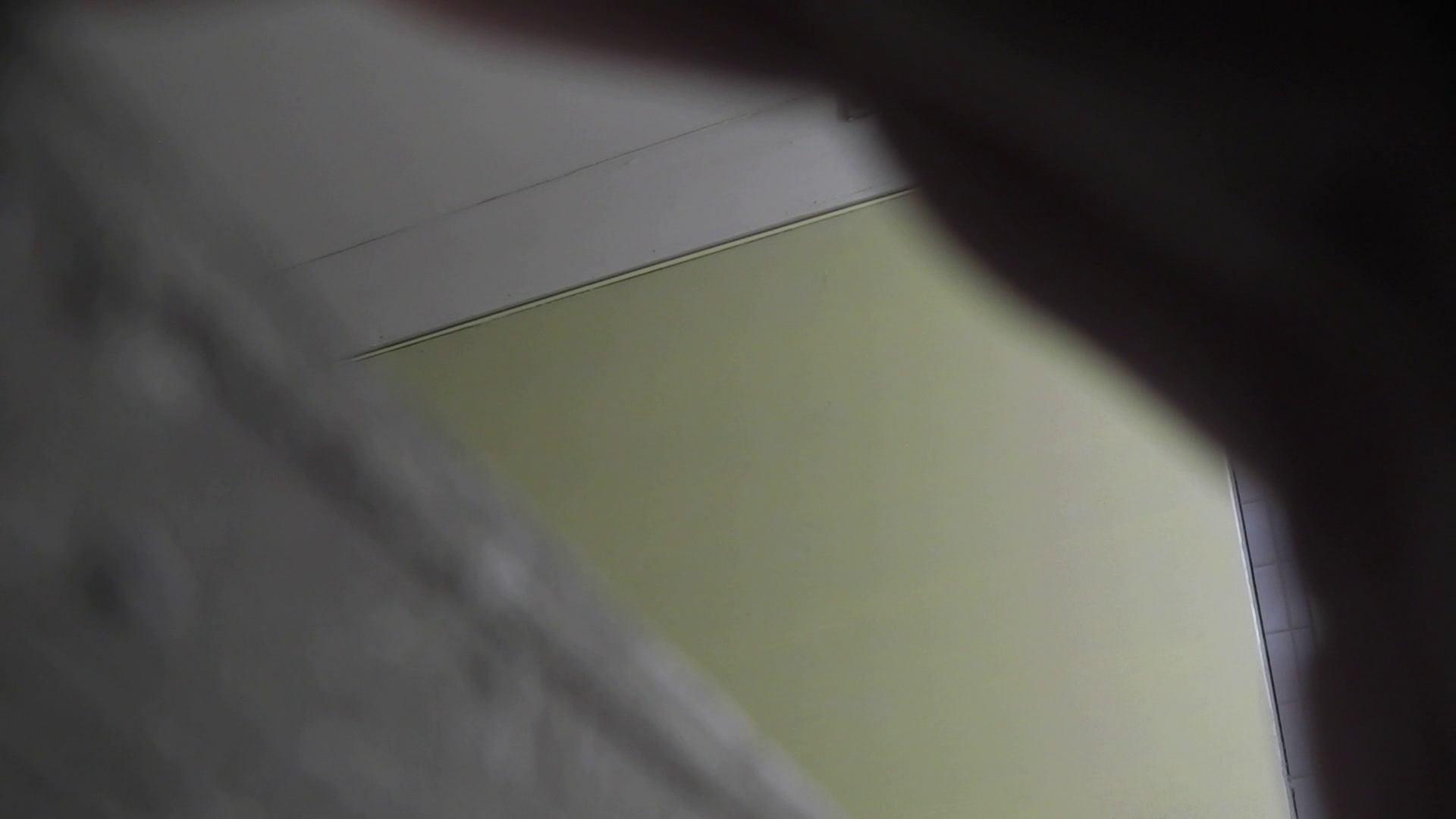 洗面所特攻隊 vol.001 清楚な美脚さん 洗面所 ぱこり動画紹介 75画像 54
