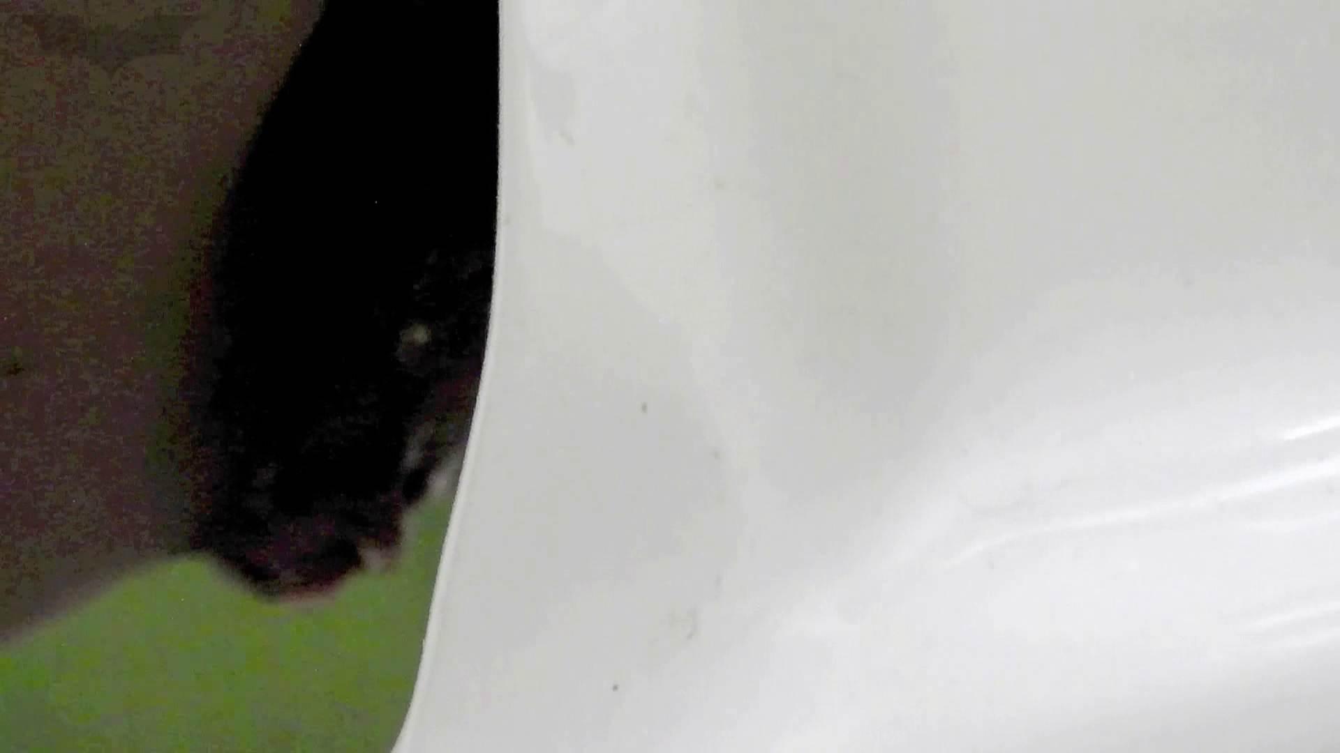 洗面所特攻隊 vol.73 ラスト3澄ました顔して、まさかの脱肛!! 洗面所 ワレメ無修正動画無料 110画像 70