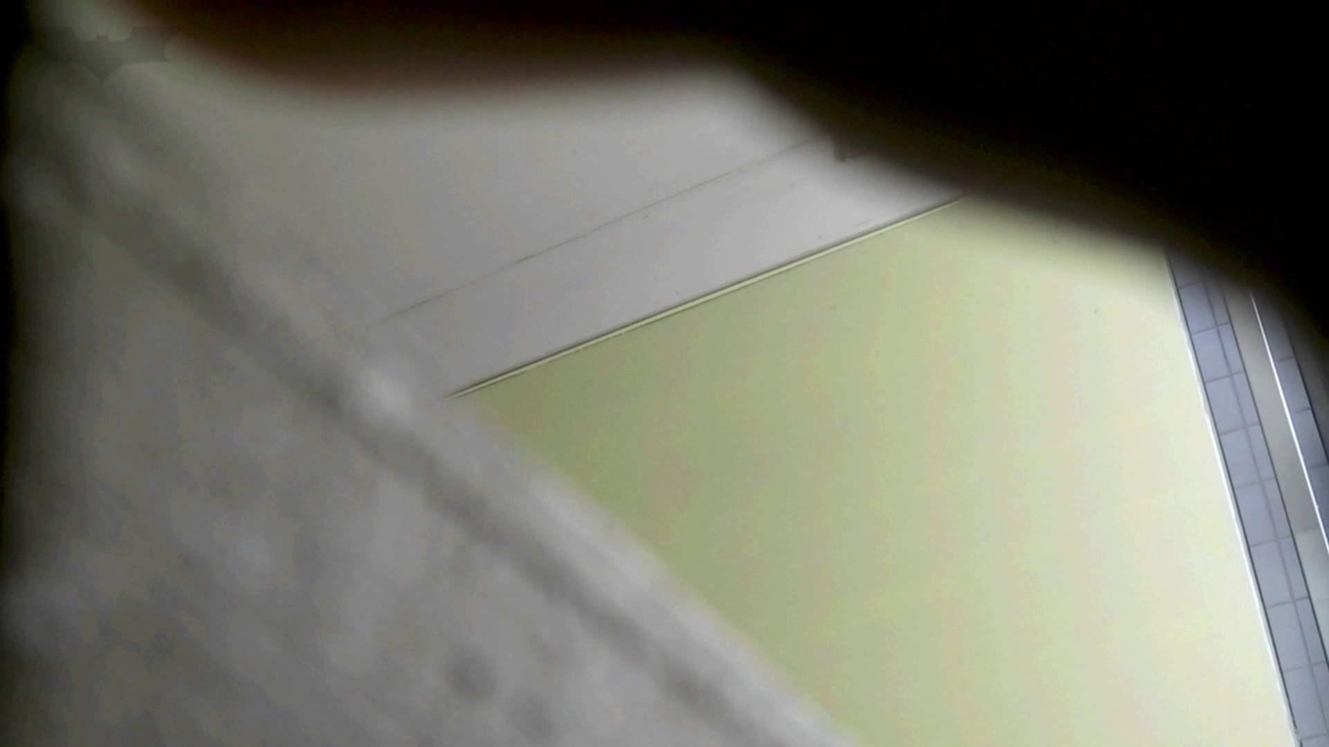 洗面所特攻隊 vol.74 last 2総勢16名激撮【2015・29位】 丸見え | お姉さん攻略  69画像 13