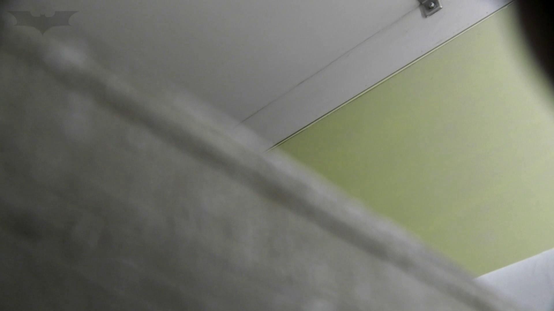 洗面所特攻隊 vol.74 last 2総勢16名激撮【2015・29位】 洗面所 AV無料動画キャプチャ 69画像 34