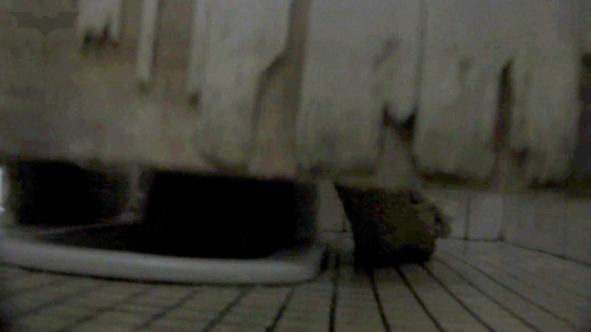 洗面所特攻隊 vol.74 last 2総勢16名激撮【2015・29位】 盛合せ われめAV動画紹介 69画像 51