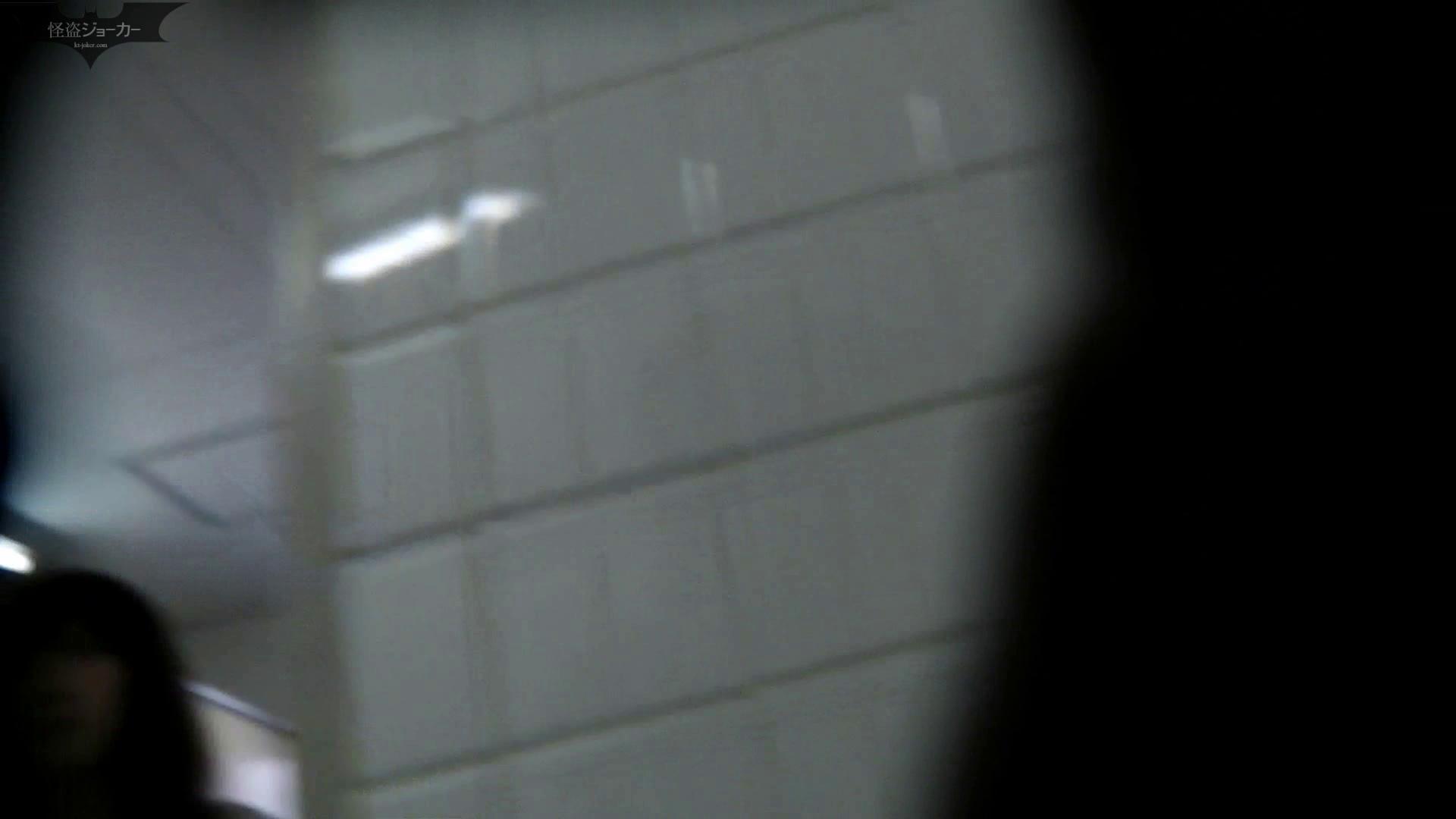 【美しき個室な世界】洗面所特攻隊 vol.046 更に進化【2015・07位】 高評価  91画像 84