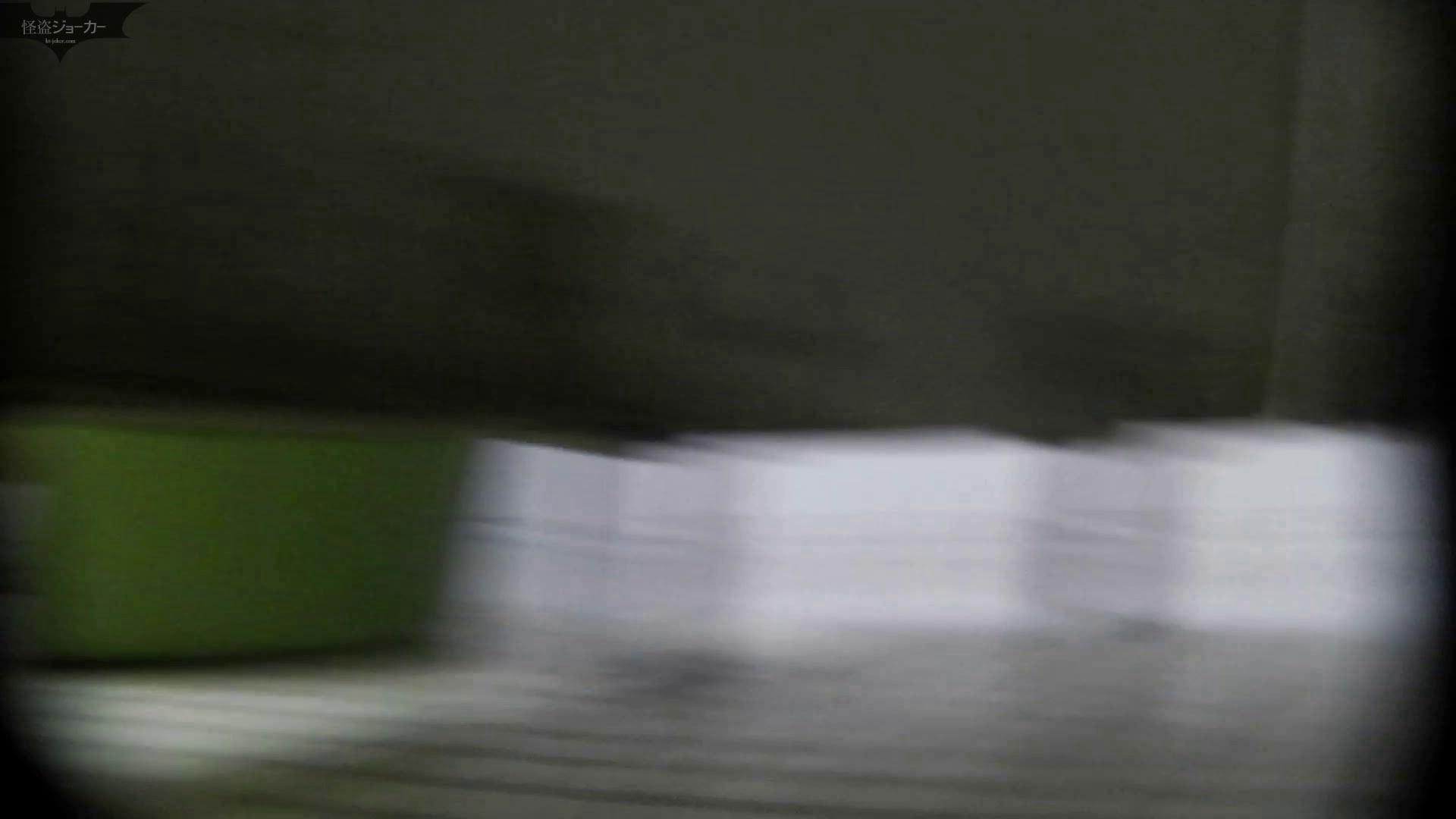 洗面所特攻隊 vol.050 特攻無毛地帯!! 高評価 性交動画流出 85画像 27