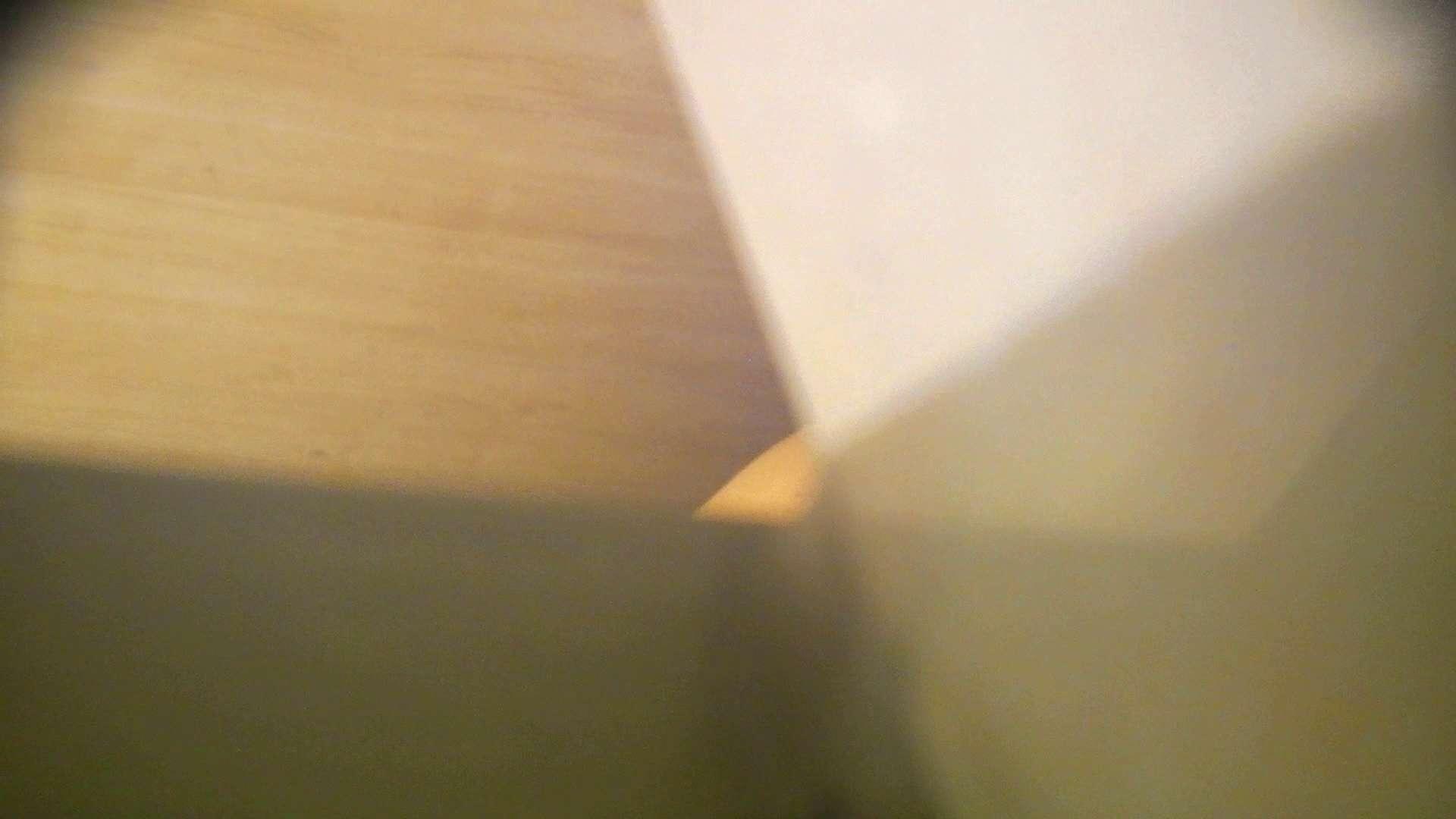 阿国ちゃんの「和式洋式七変化」No.12 洗面所  99画像 48