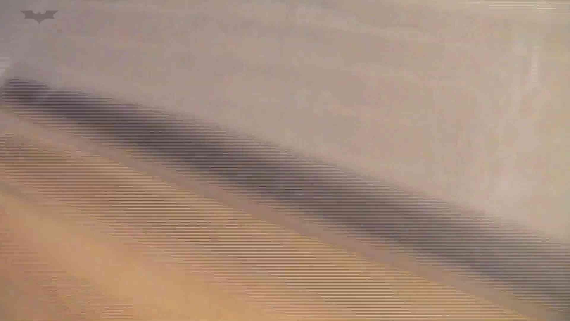 和式洋式七変化 Vol.30 こんなアンクル見たことありますか? 盛合せ セックス無修正動画無料 84画像 73