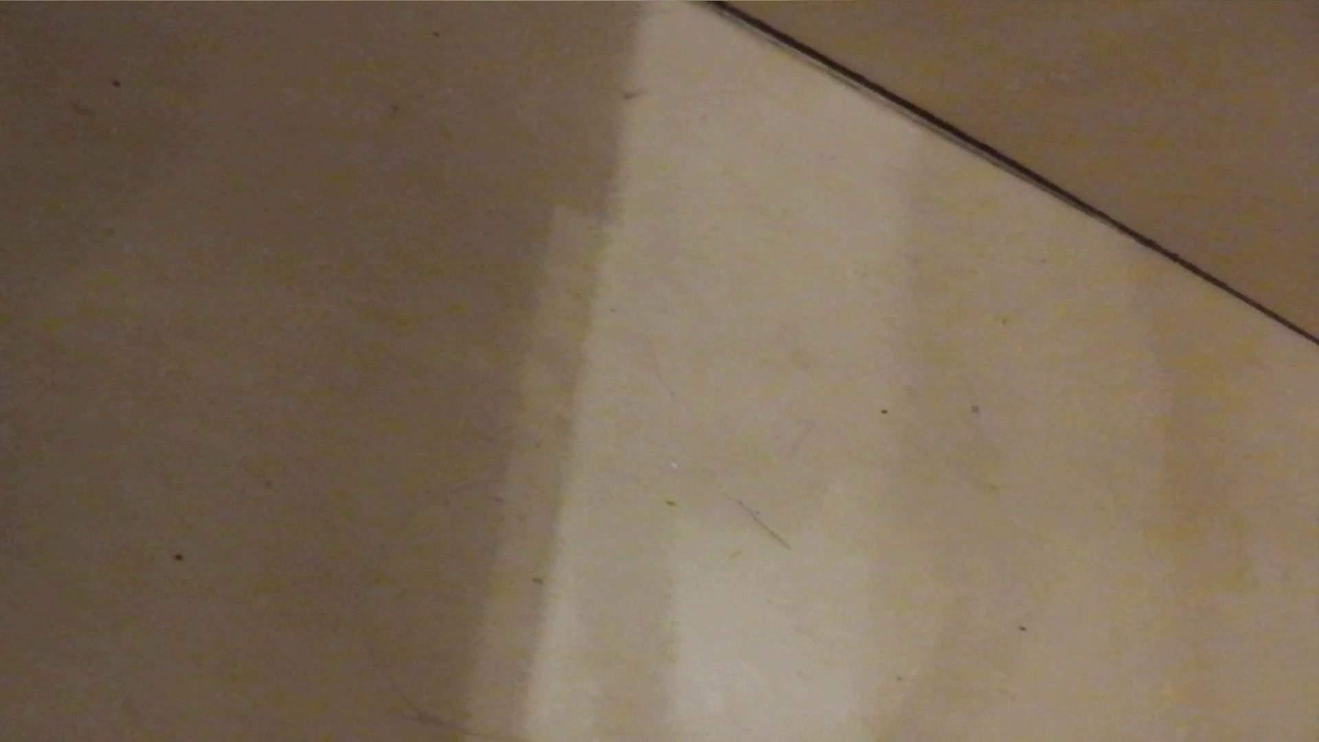 世界の射窓から vol.2 洗面所 AV無料 70画像 64