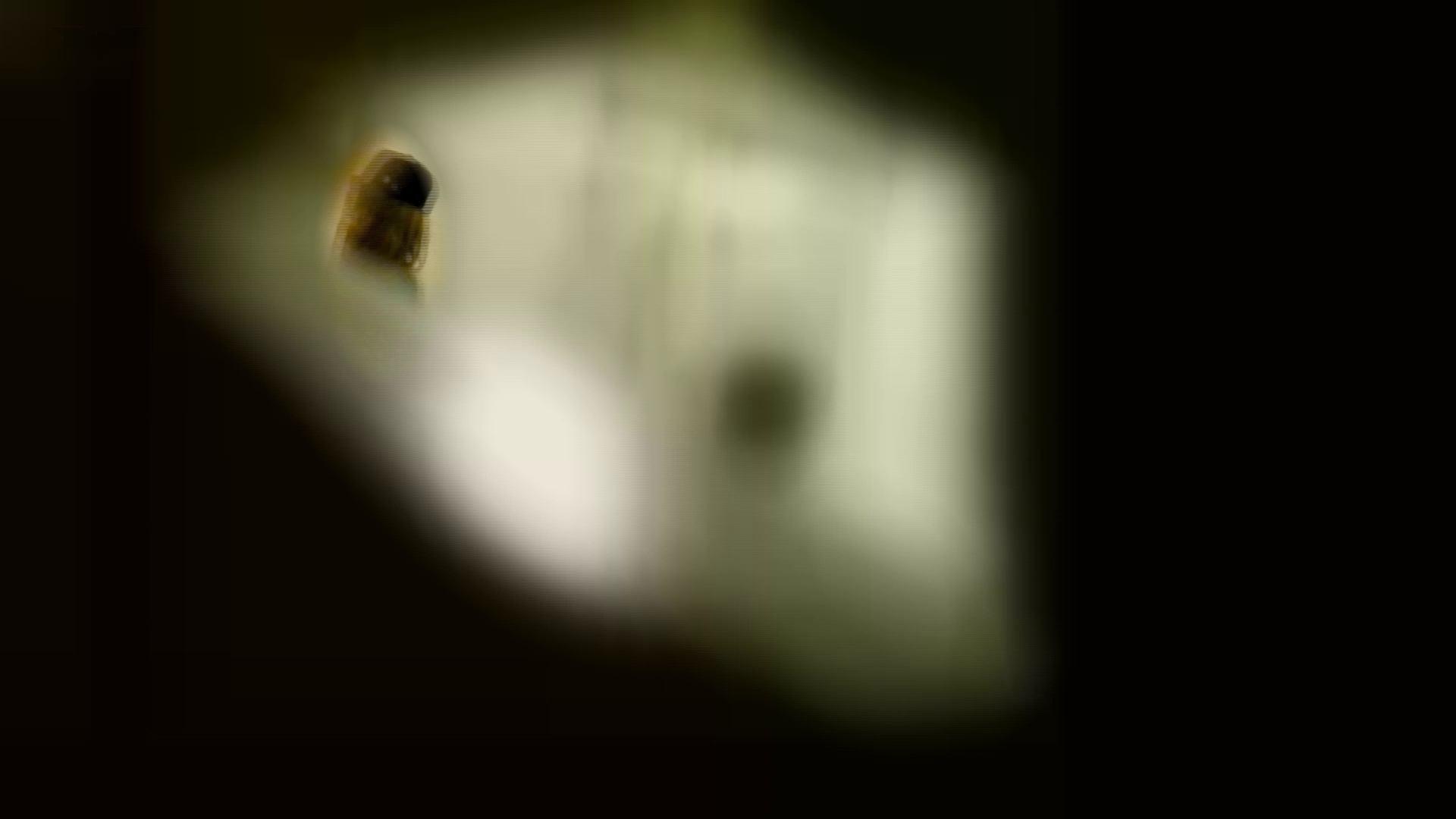 新世界の射窓 No78 トリンドル 玲奈似登場シリーズ美女率最高作! 盛合せ | 洗面所  103画像 19