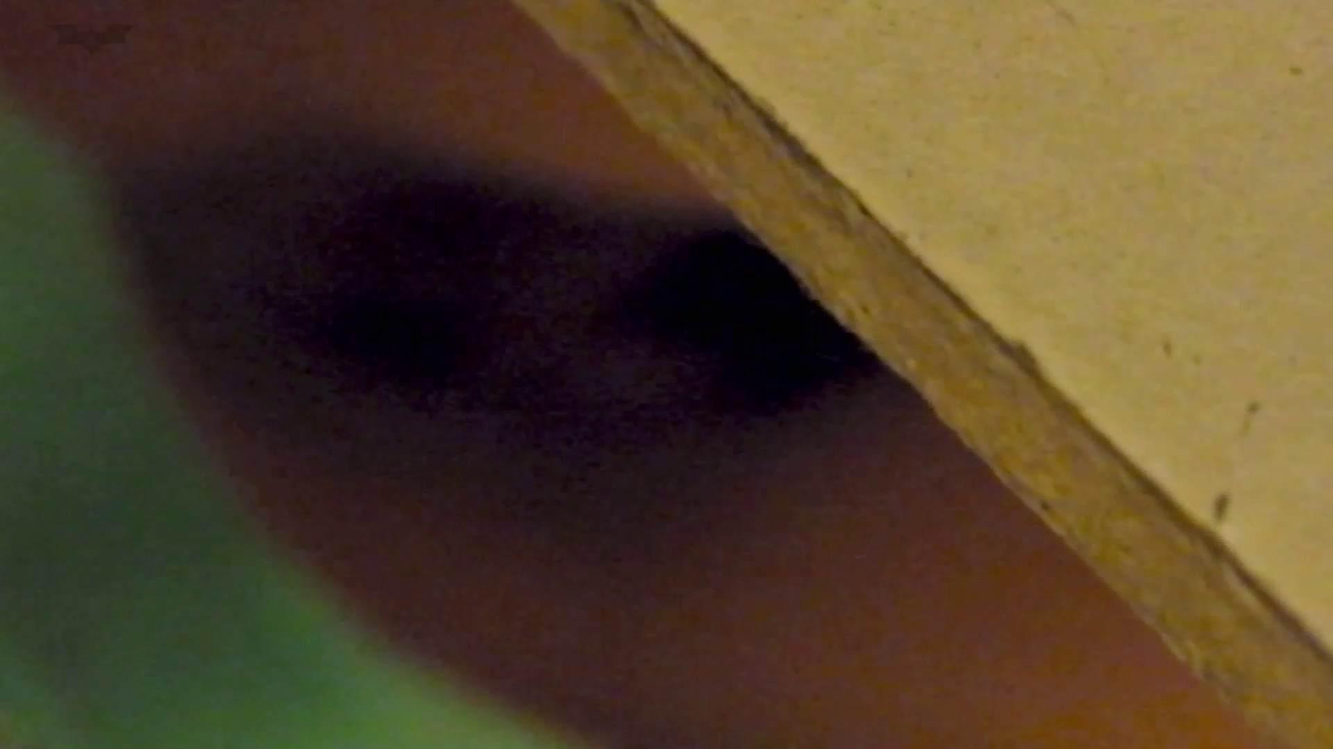 新世界の射窓 No78 トリンドル 玲奈似登場シリーズ美女率最高作! 盛合せ | 洗面所  103画像 79