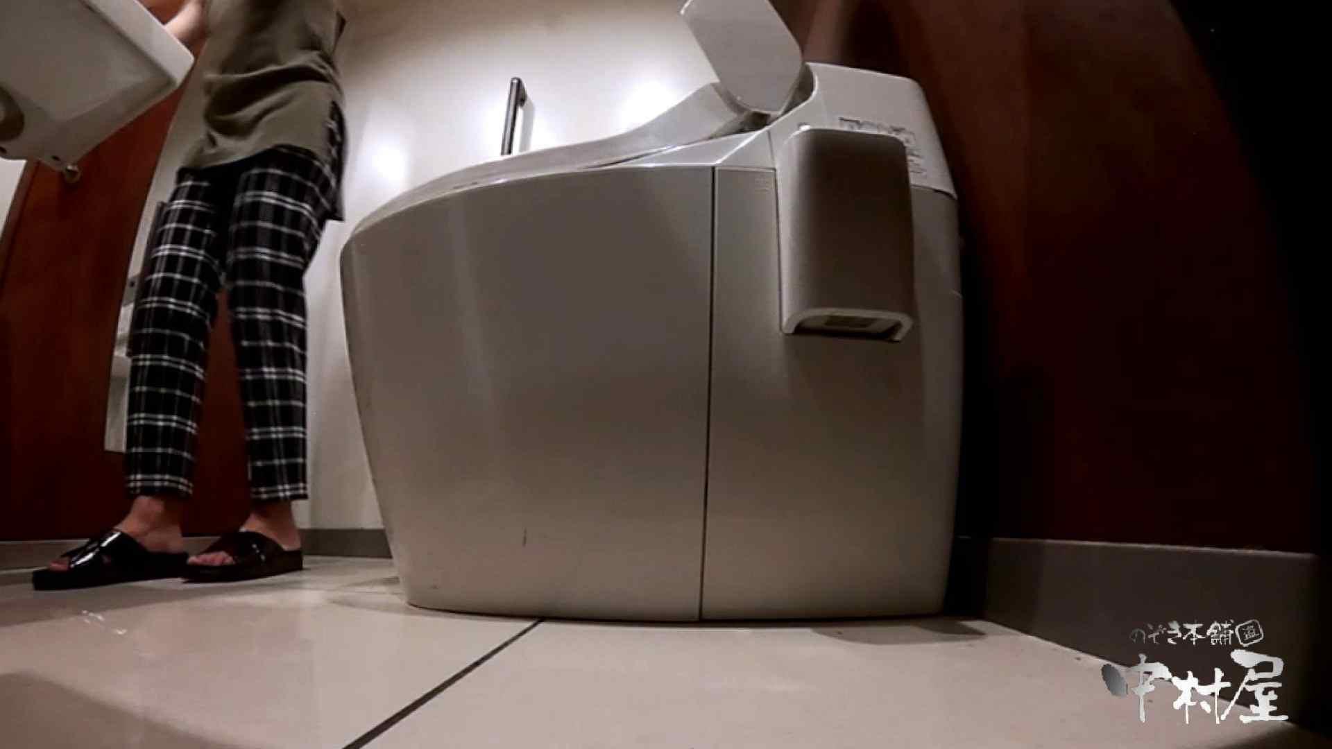 オマンコ丸見え:高画質トイレ盗撮vol.20:のぞき本舗 中村屋