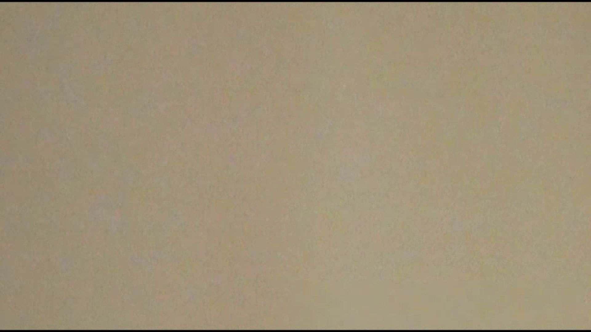 オマンコ丸見え:洗面所で暗躍する撮師たちの潜入記Vol.14:ピープフォックス(盗撮狐)